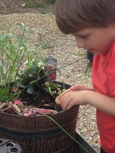 Sat Jun 12 Kid's Kit Bog Garden after 10 am